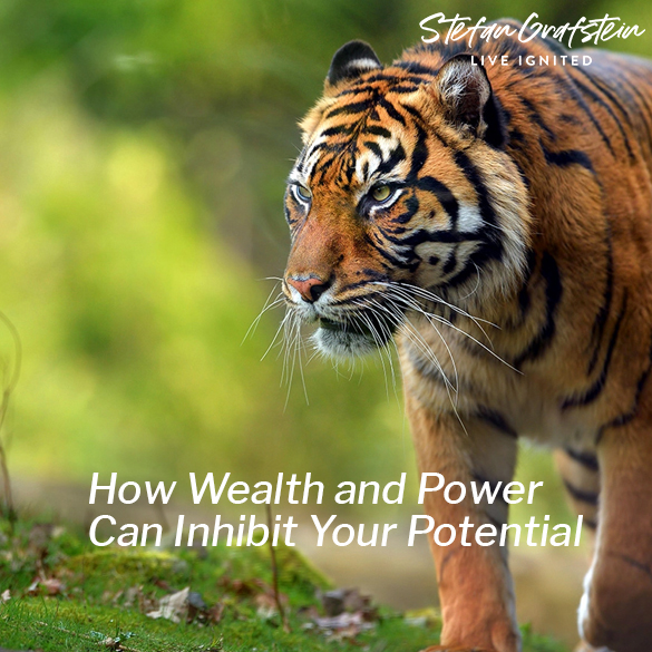 How Wealth and Power Can Inhibit Your Potential